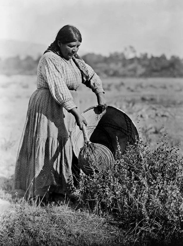 nativa-american-pomo-woman-the-vault--edward-curtis.jpg